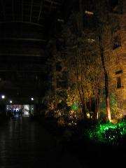cdnc-jiuzhai-paradise-01.jpg
